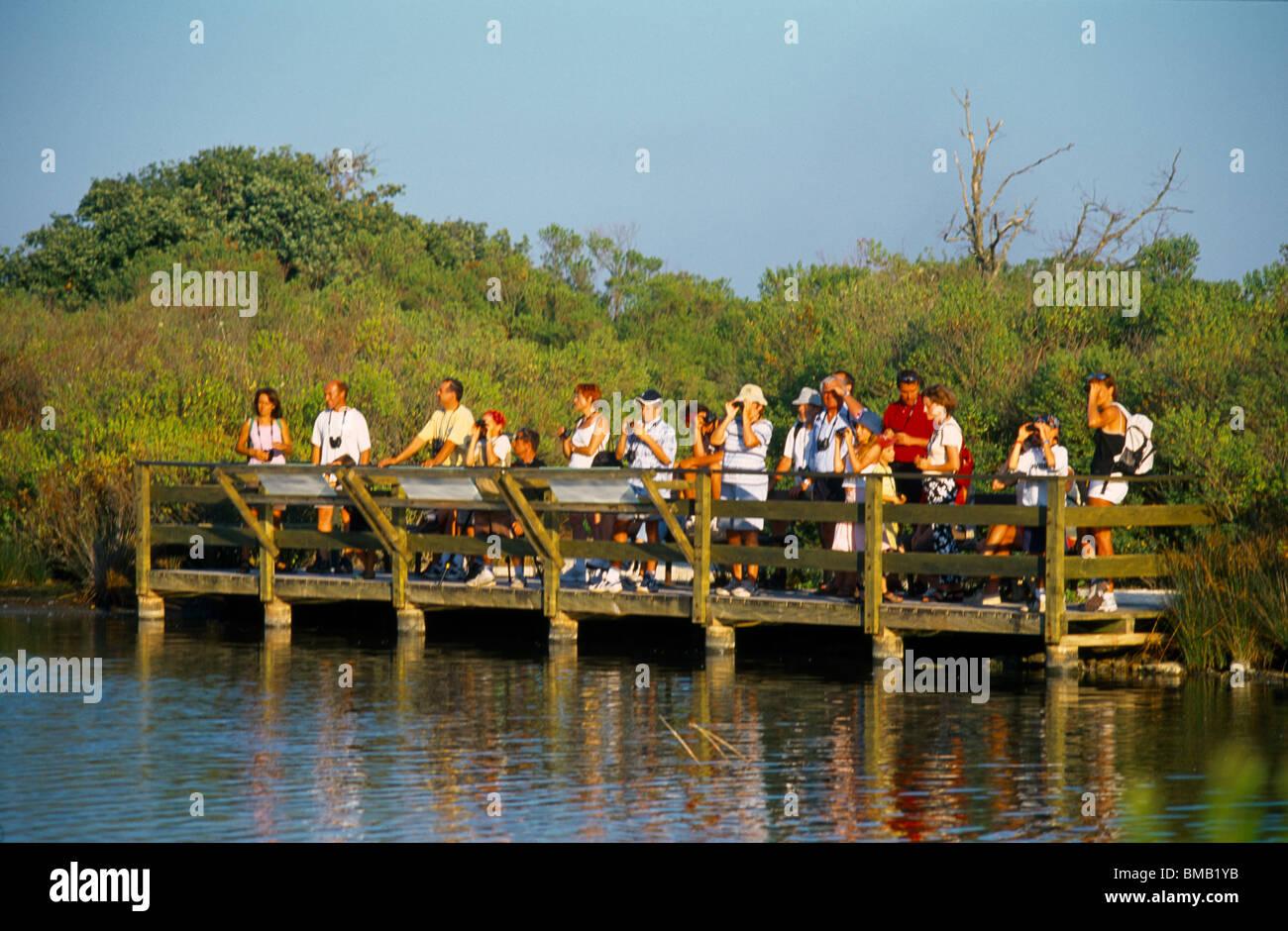 Le Teich France Parc Ornithologique Du Teich Nature Reserve People Bird Watching - Stock Image