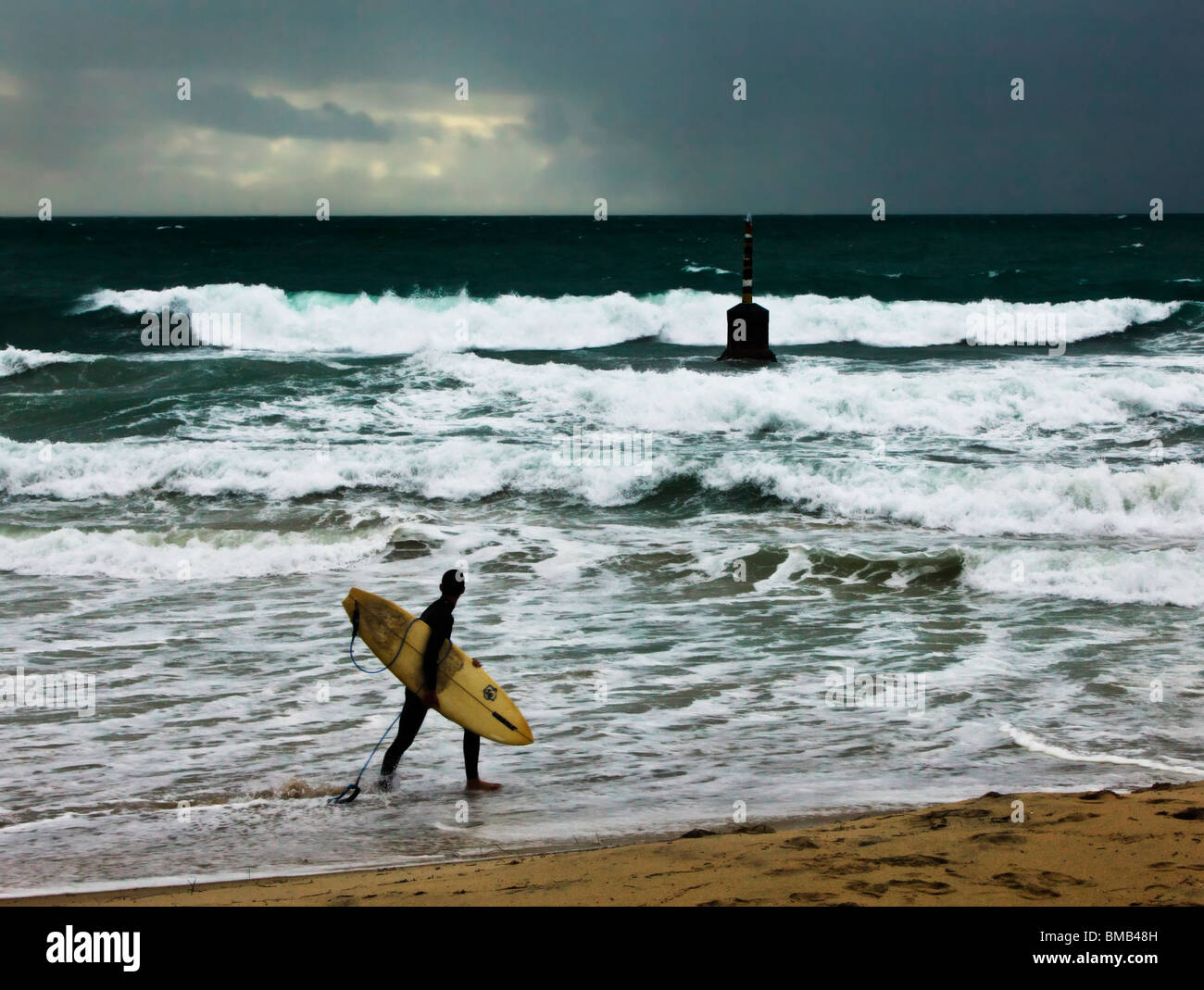 A surfer surveying the waves at Cottesloe Beach. Perth, Western Australia - Stock Image