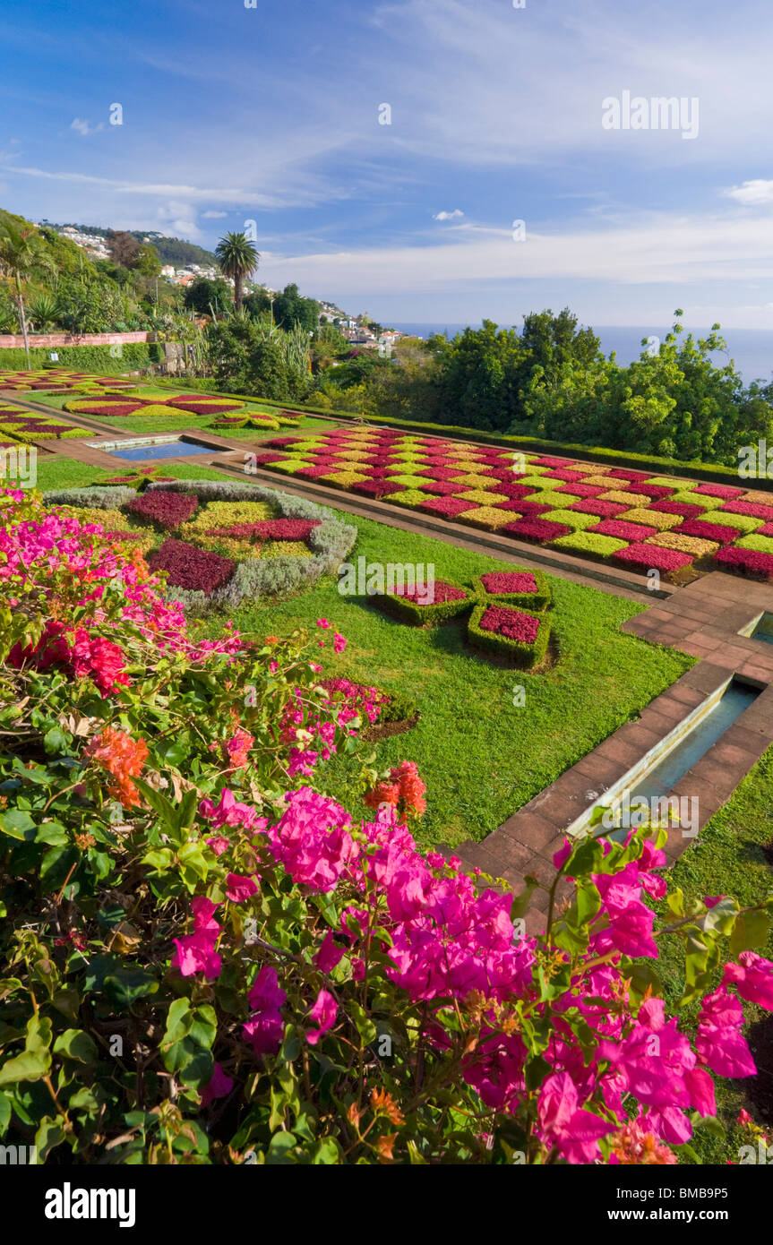 Botanical gardens, Jardim Botanico, above the capital city of Funchal, Madeira, Portugal, EU, Europe - Stock Image