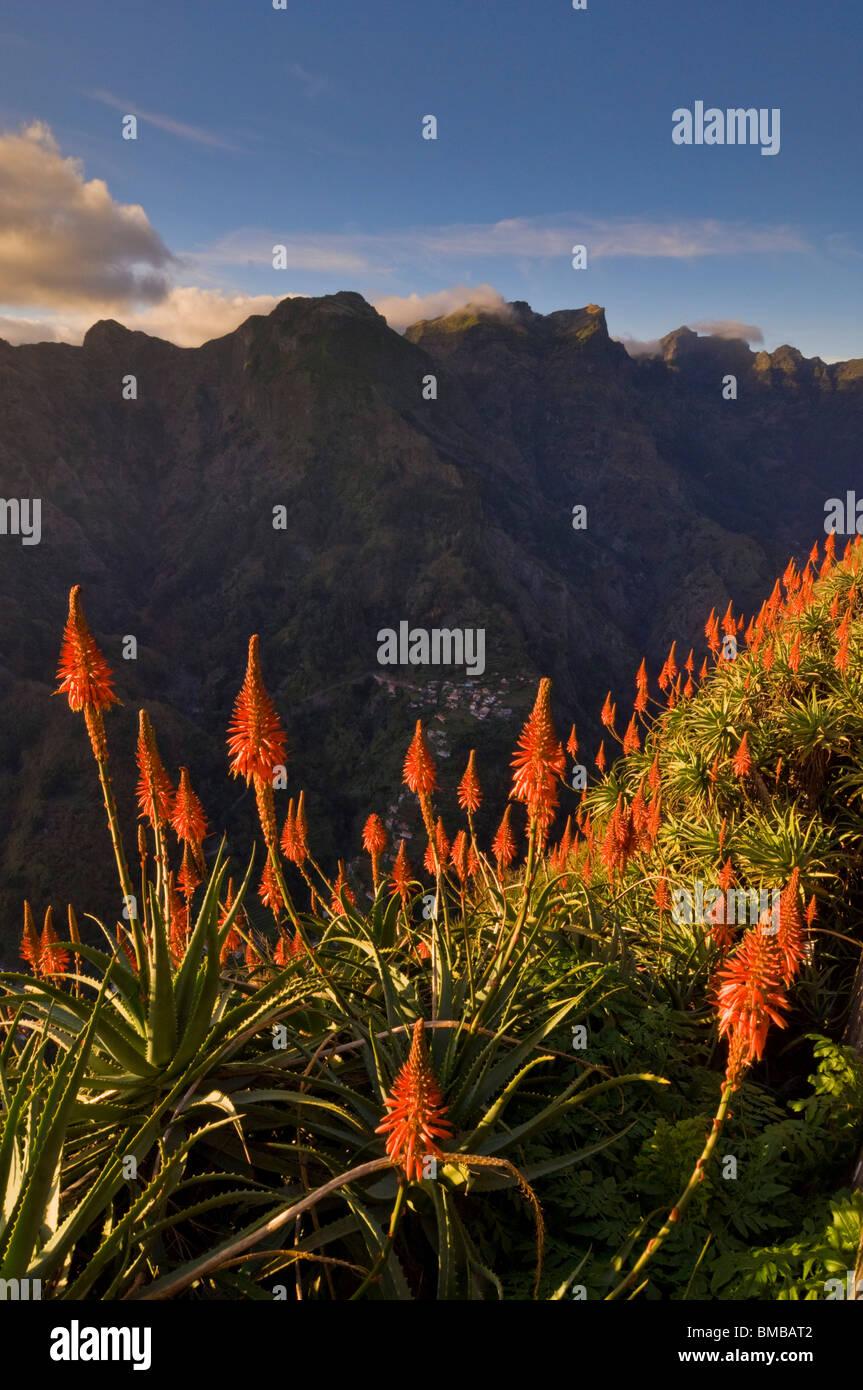 Eira do Serrado viewpoint sunset Curral das Freiras, central Madeira, Portugal, EU, Europe - Stock Image