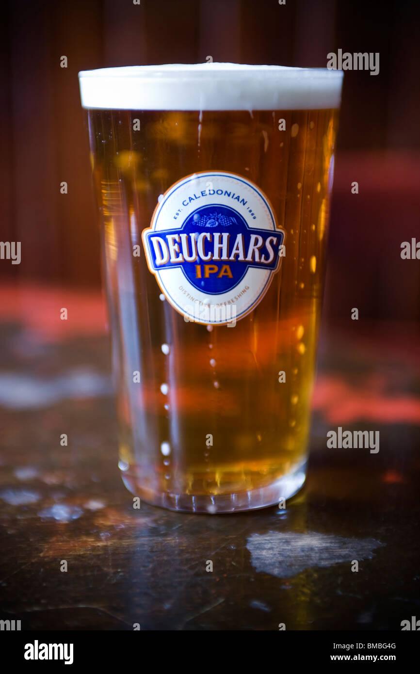 Pint of Deuchars IPA Beer - Stock Image