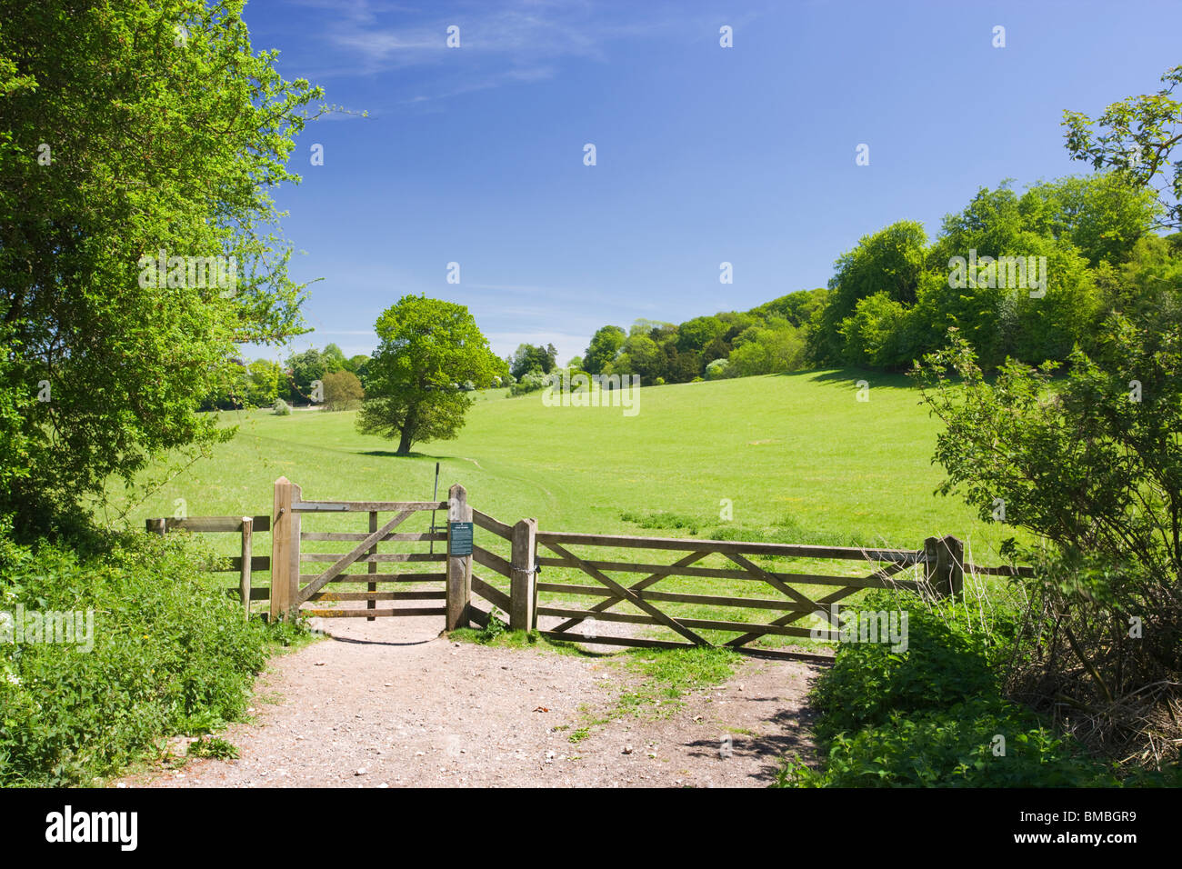 Gate into field at Ranmore, Dorking, Surrey, UK - Stock Image
