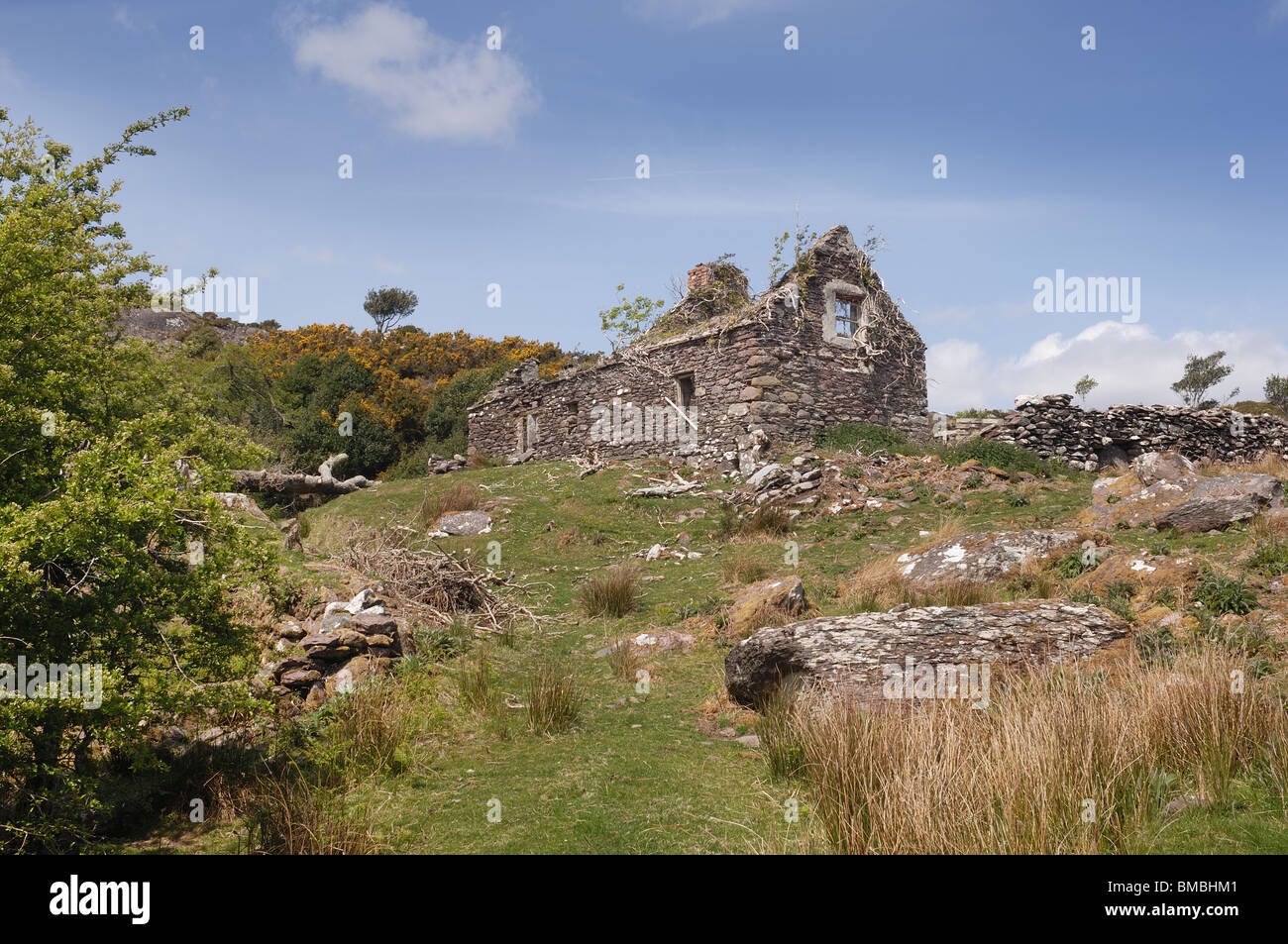 Irish Cottage, Probably Dating from the Famine - John Gollop - Stock Image