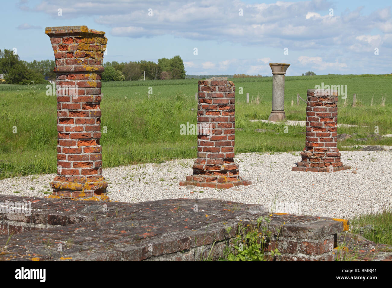 Ruins of the biggest Medieval Augustinian monastery, Æbelholt, near Hillerød and Copenhagen, Denmark - Stock Image