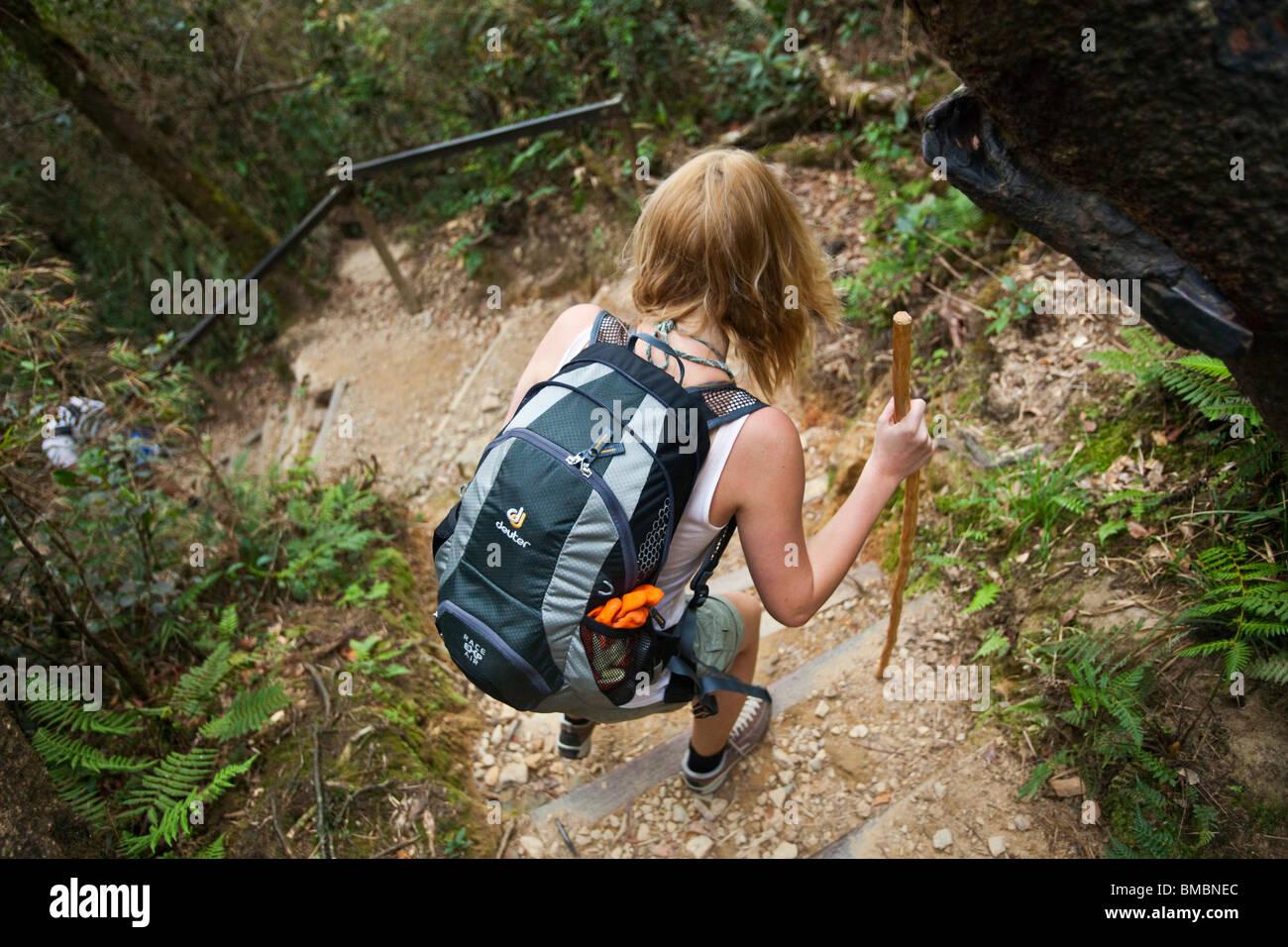 Hiker on the Mt Kinabalu summit trail. Kinabalu National Park, Sabah, Borneo, Malaysia. - Stock Image