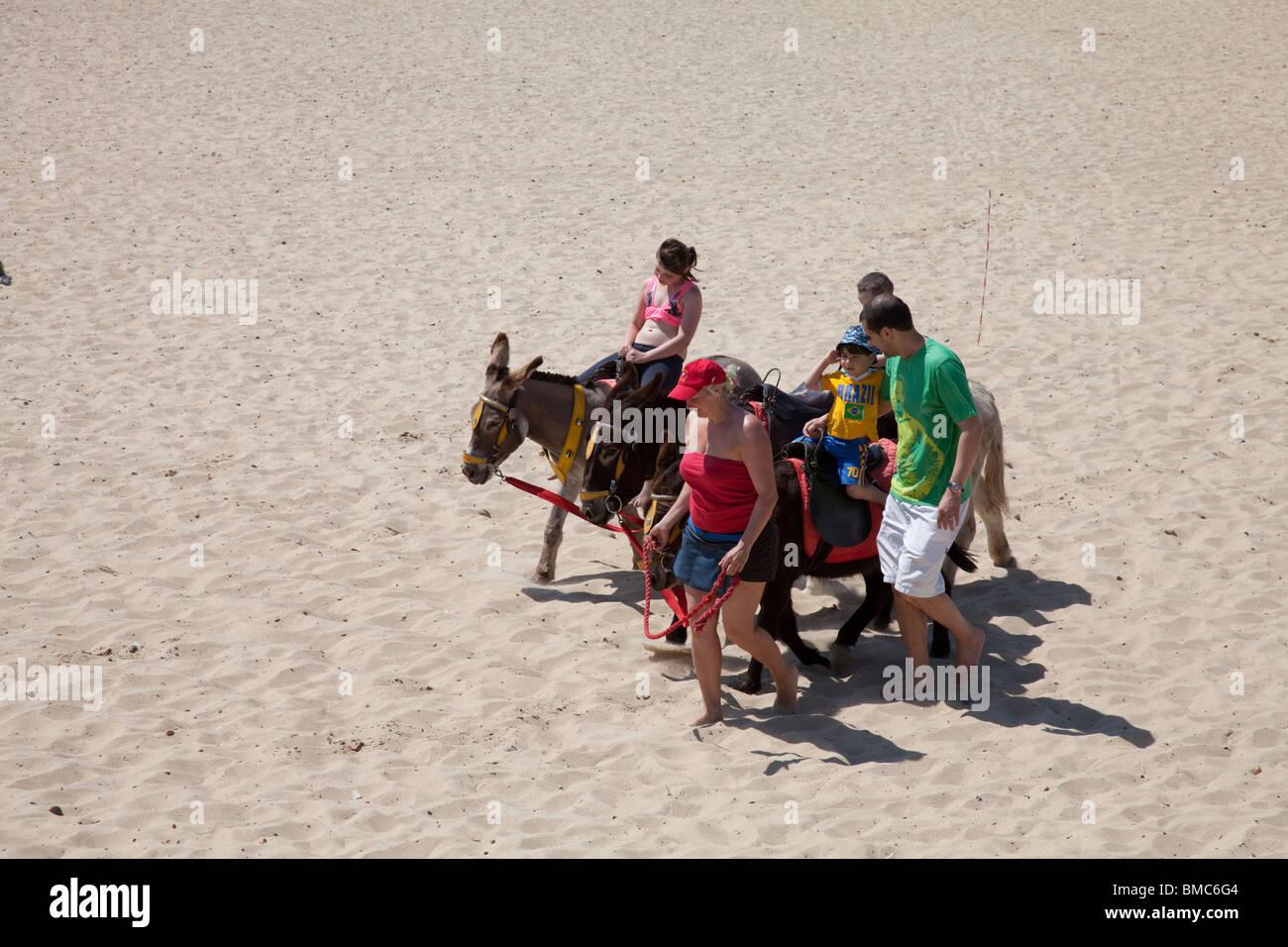Donkeys on beach Gt Yarmouth Norfolk Stock Photo