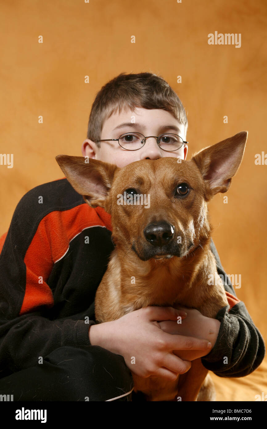 Junge schmust mit Hund / boy with dog Stock Photo