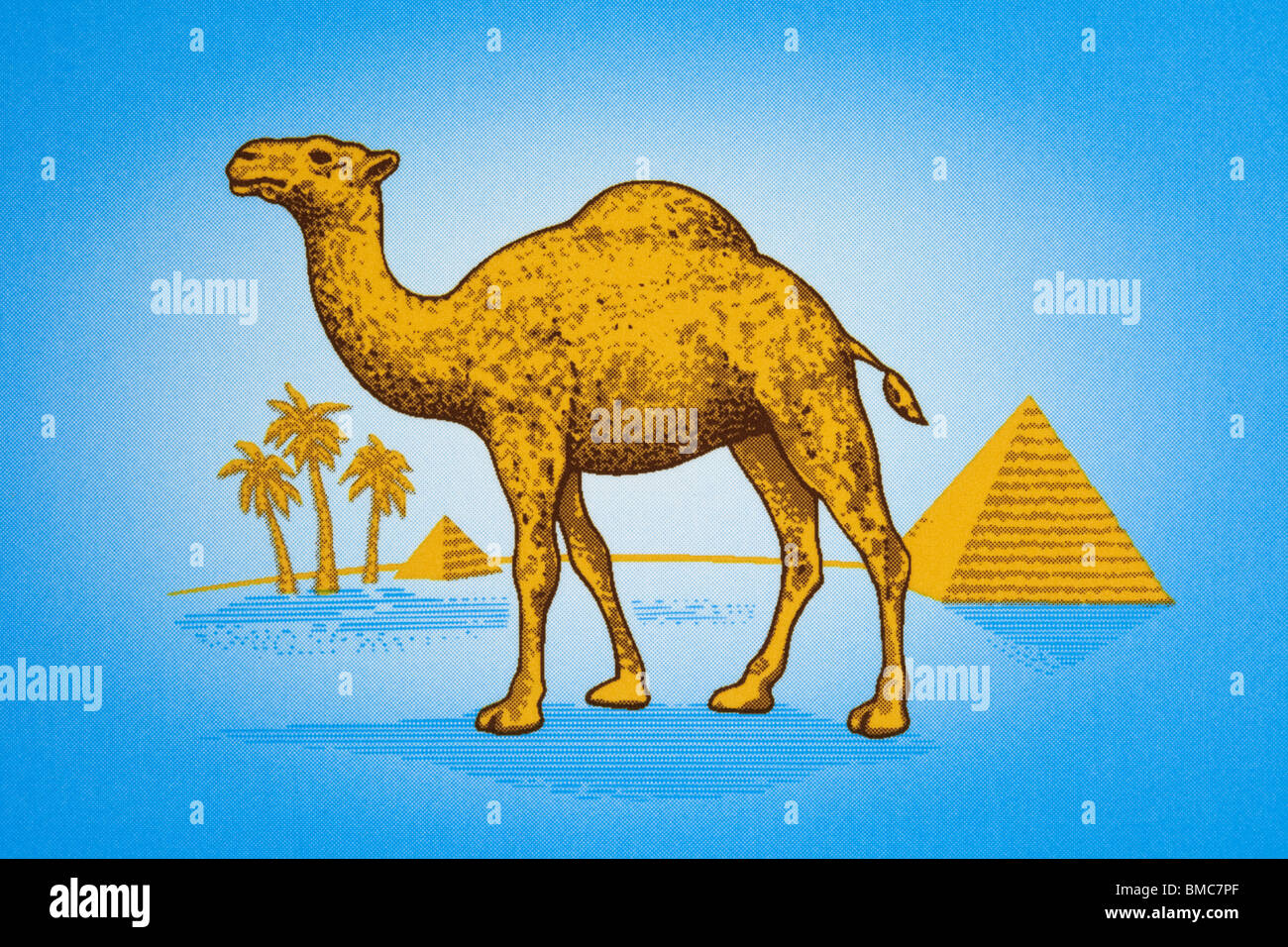 camel cigarette logo stock photo 29773031 alamy rh alamy com Camel Cigarettes Logo Subliminal camel cigarettes logo hidden images