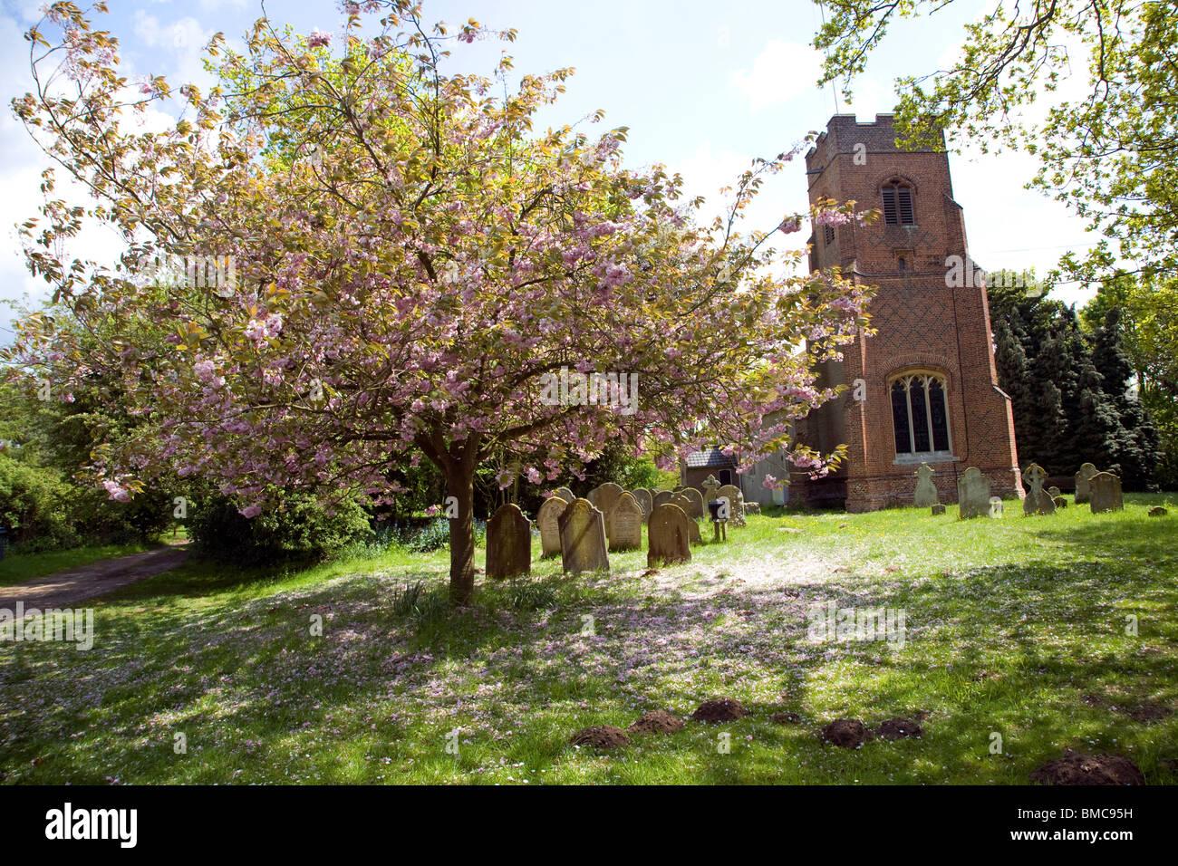 Church of All Saints, Waldringfield, Suffolk - Stock Image