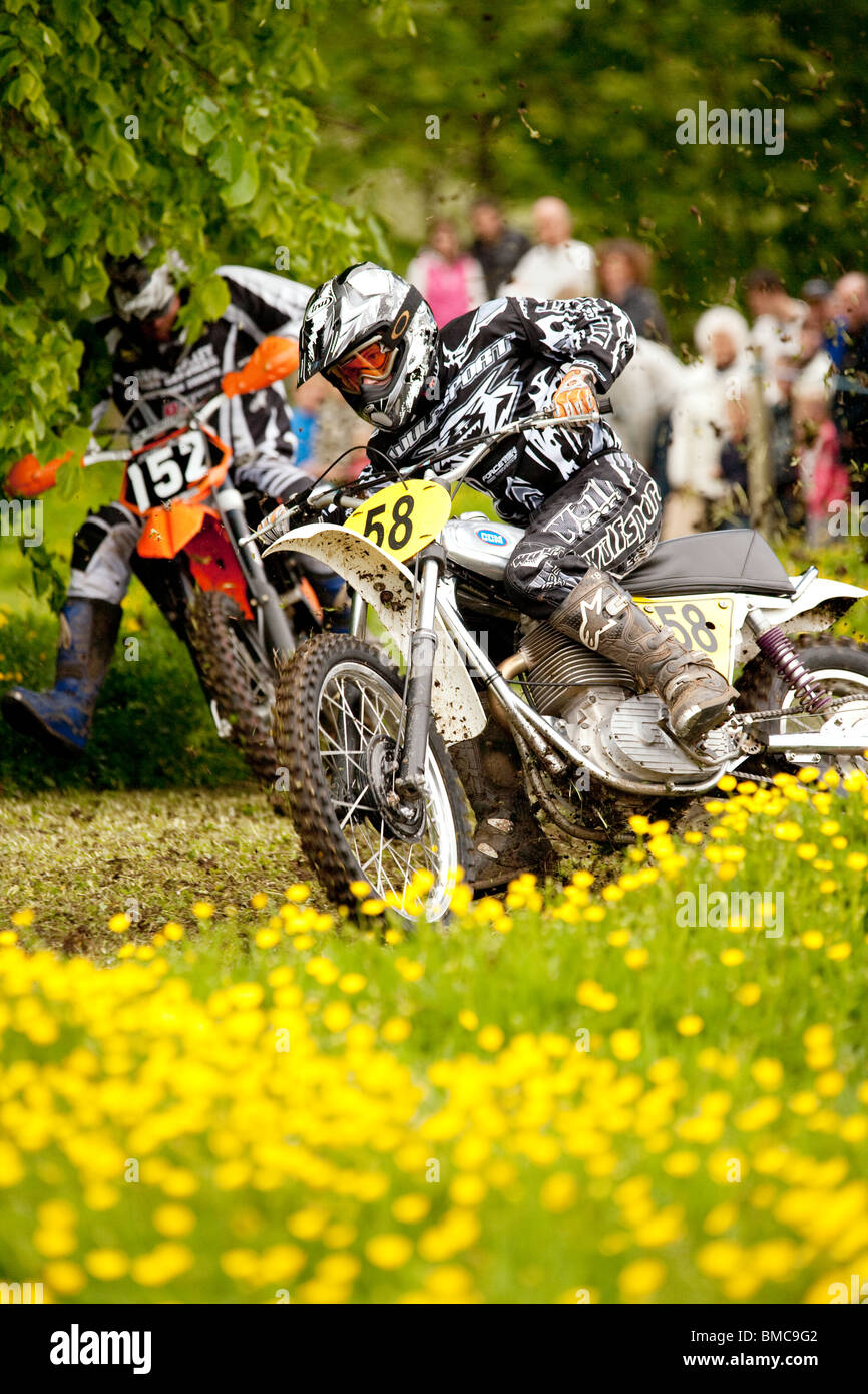 Classic motocross demo at the Barony College open day two motorcycles racing through field of spring buttercups - Stock Image