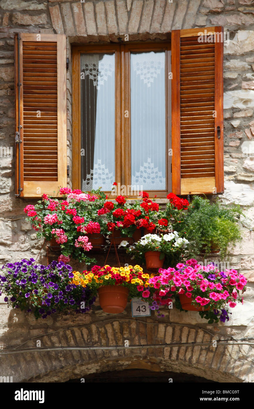 A window with a lot of flowers Stock Photo