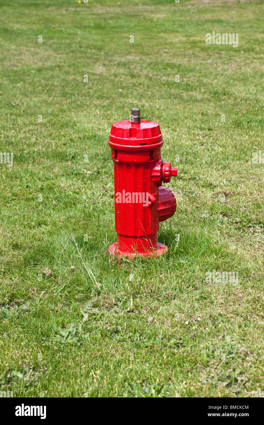 Fire Hydrant on green lawn - Stock Image