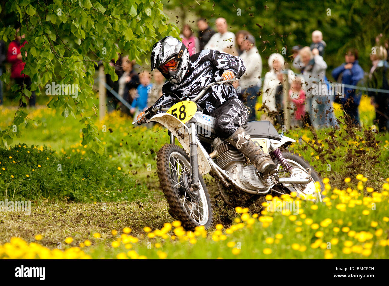 Classic Motocross Demo At The Barony College Open Day Motorcycle Racing  Through Field Of Spring Buttercups