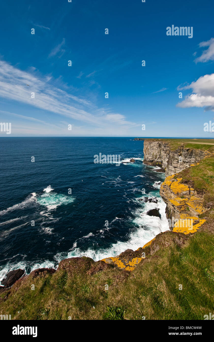 Coastline at Marwick Head, Orkney, Scotland - Blue Sky, Blue Sea - Stock Image