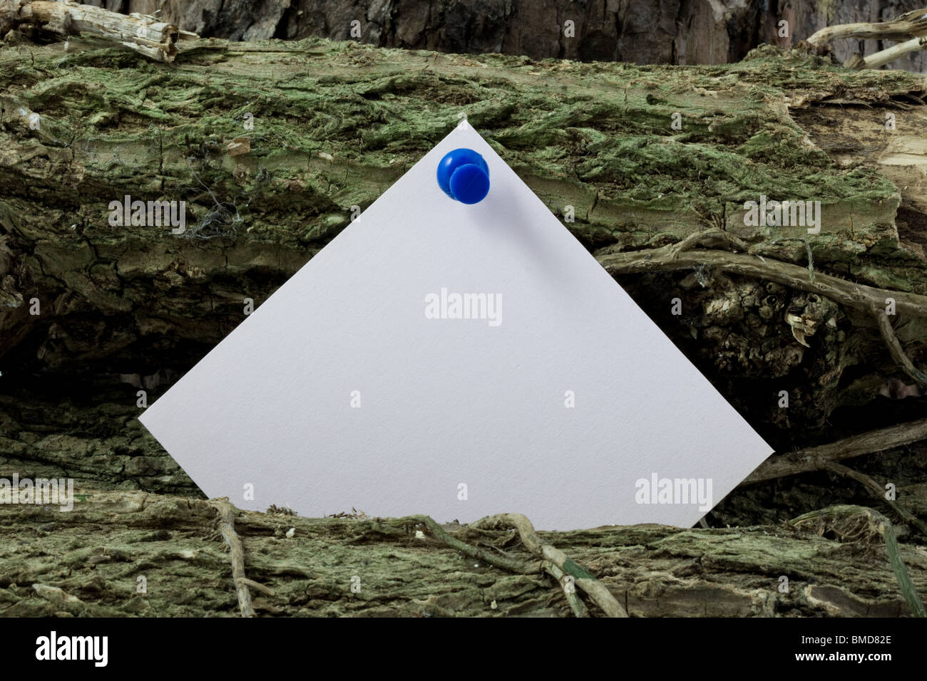 A post it note on  a woodpile - Stock Image