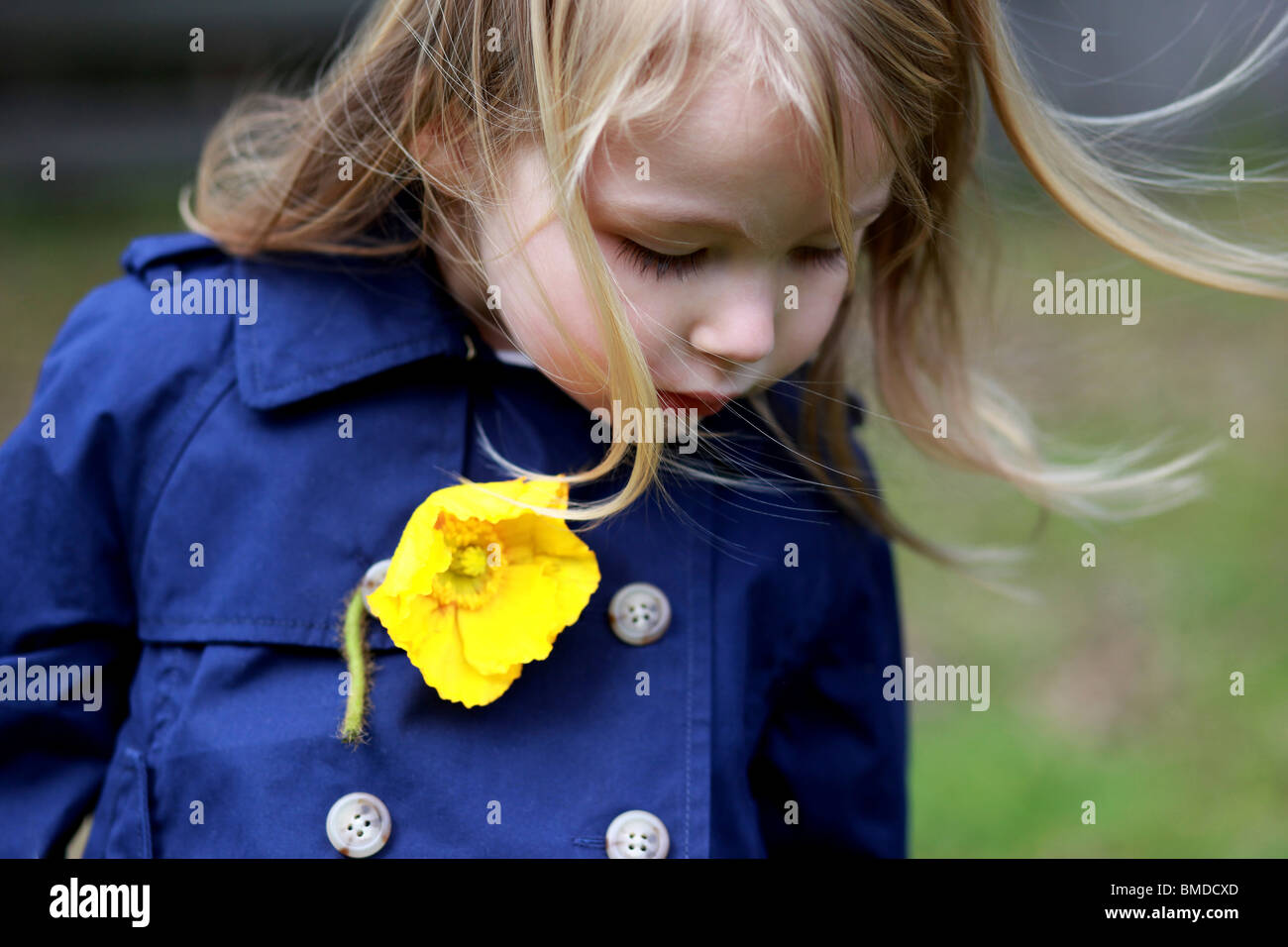 Young girl with yellow poppy on her blue pea coat - Stock Image