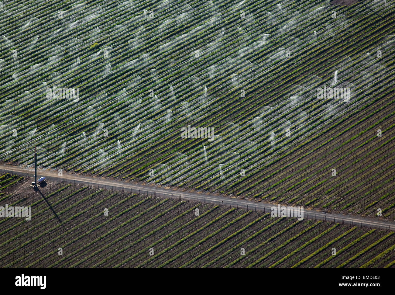 aerial view above sprinkler irrigation central valley California - Stock Image