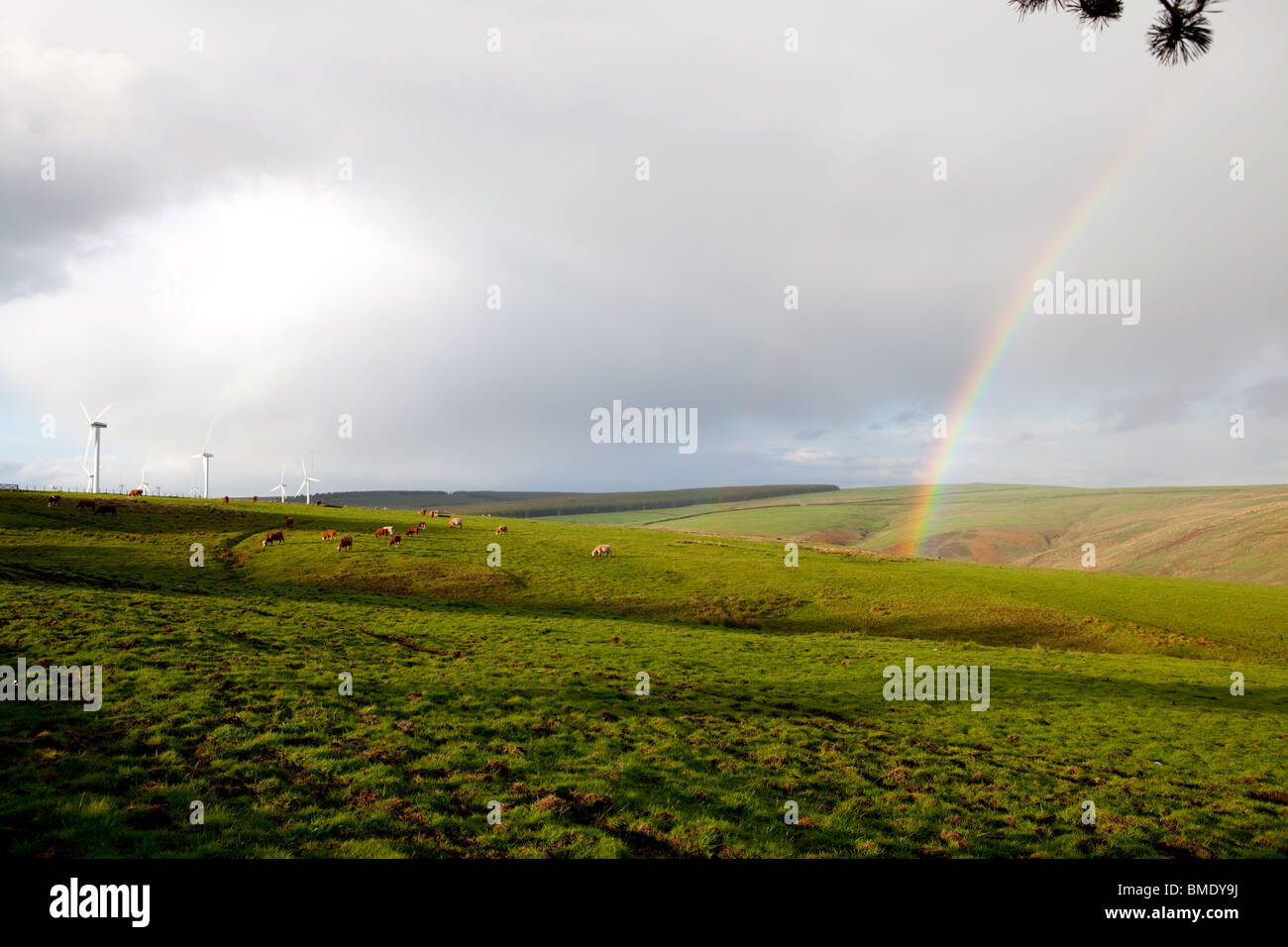 A rainbow against a cloudy sky and farmland, with wind turbines in the distance - Stock Image