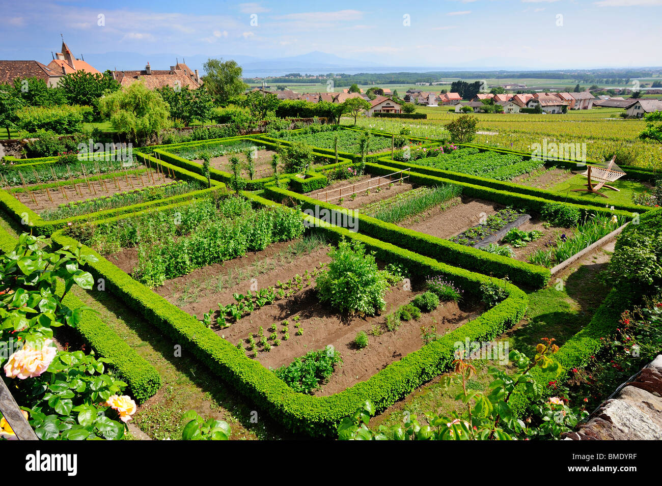 A Swiss kitchen garden in the wine-growing region called La Cote. The garden is neat and orderly - Stock Image