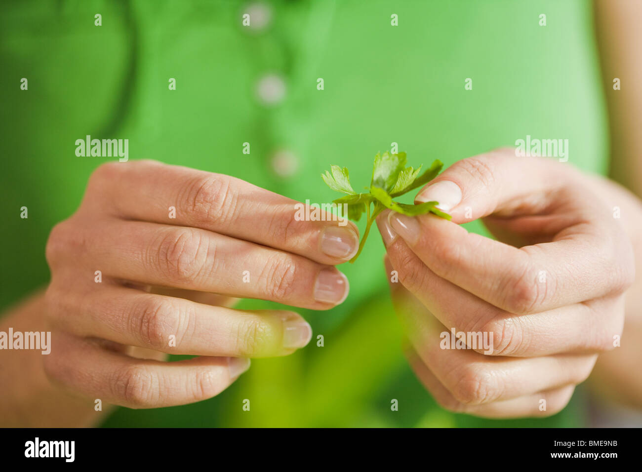 Woman with parsley, Sweden. - Stock Image