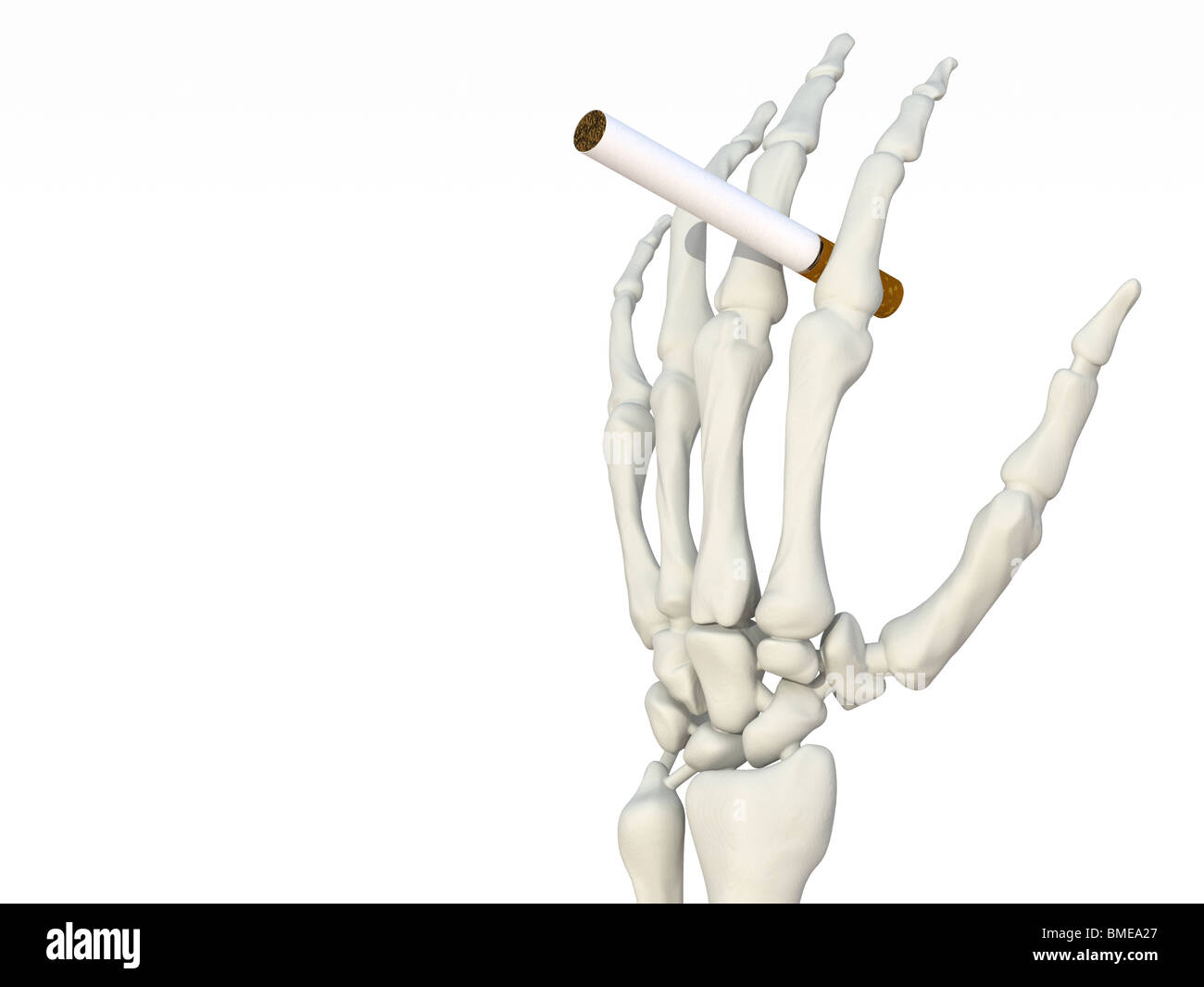 Admirable Skeleton Hand With Cigarette Stock Photo 29818719 Alamy Wiring Cloud Tziciuggs Outletorg