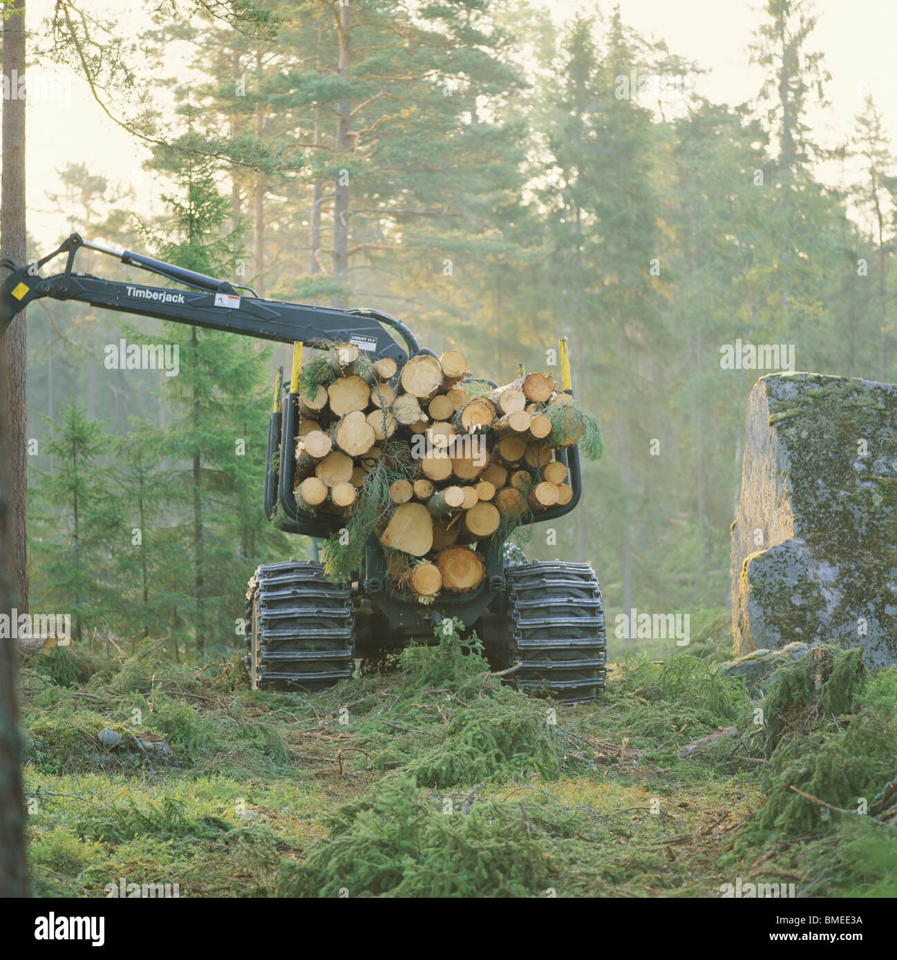 Mobile crane carrying logs in forest - Stock Image