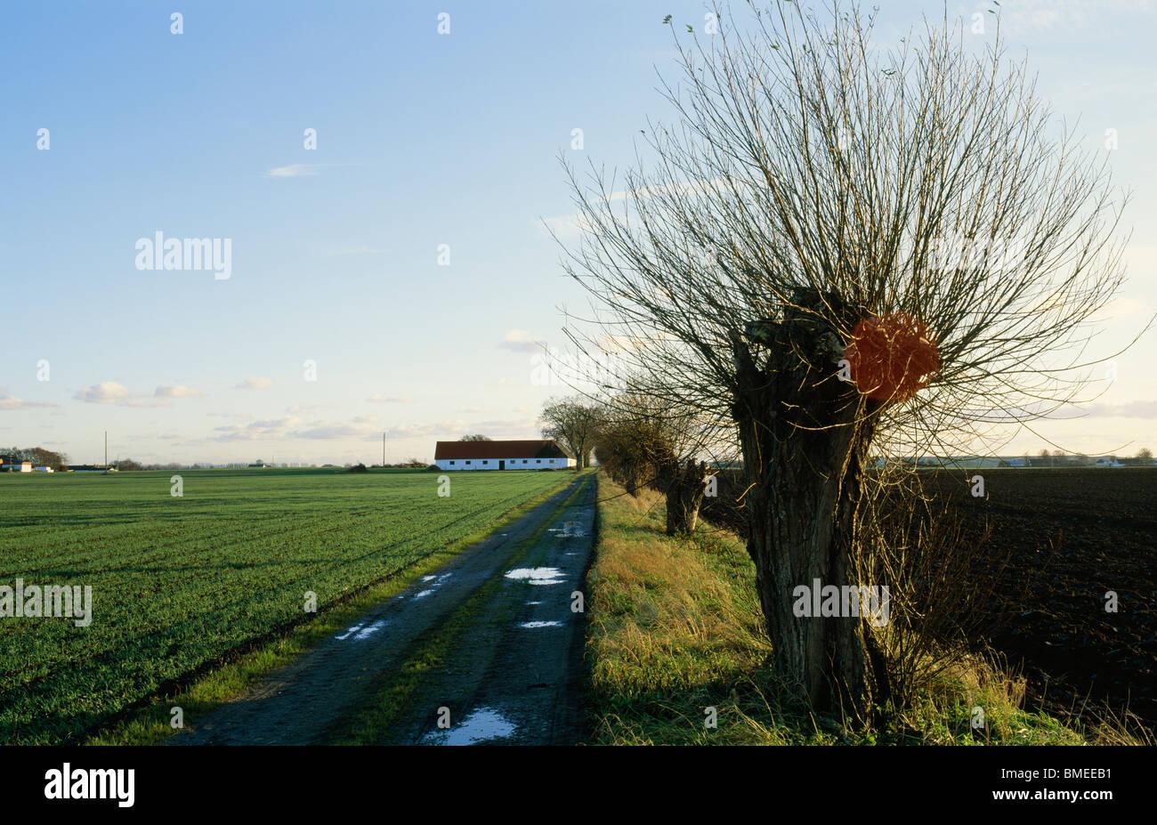 Road passing through landscape - Stock Image