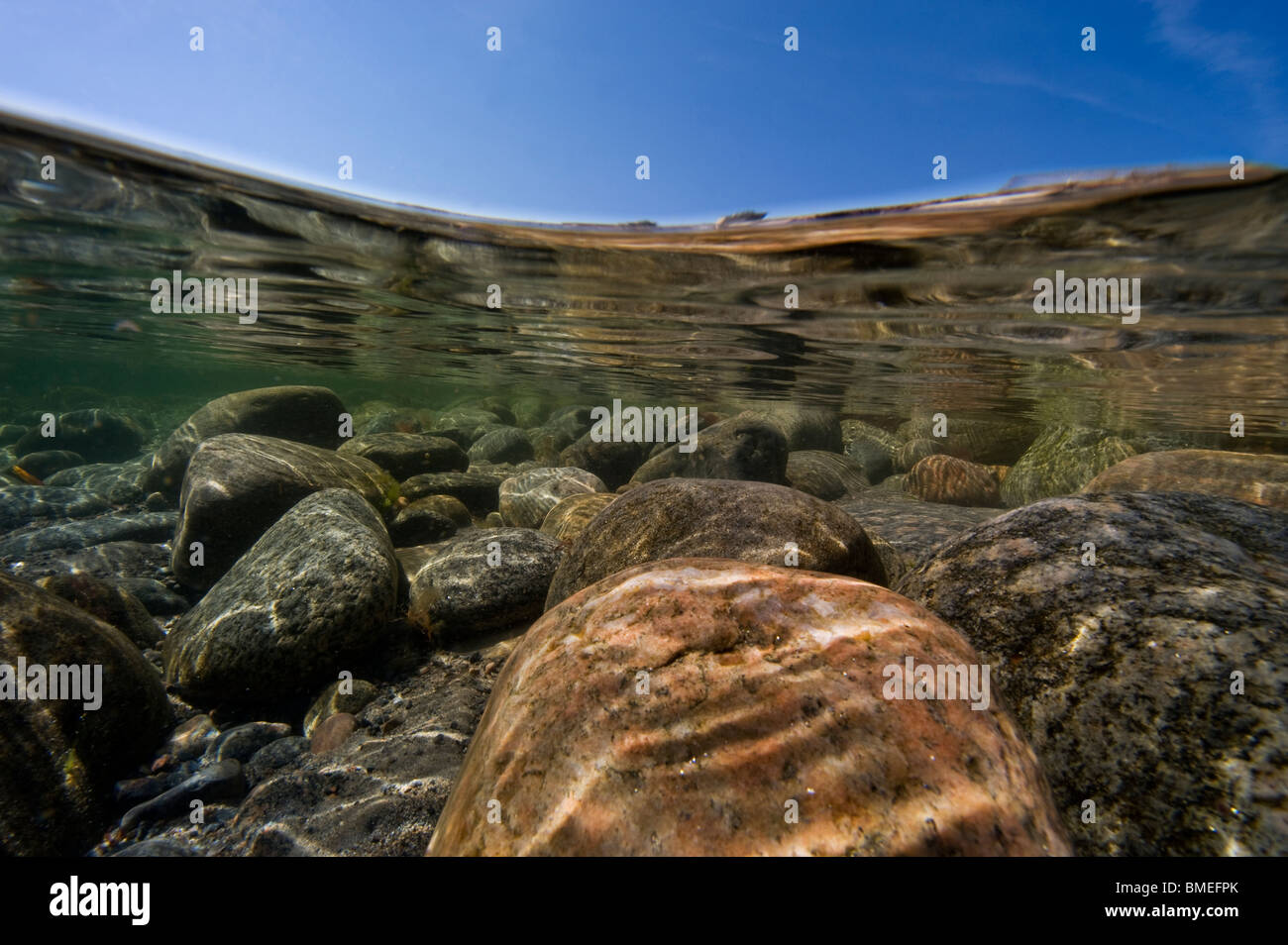 Scandinavia, Sweden, Halland, Vastkusten, View of seabed - Stock Image