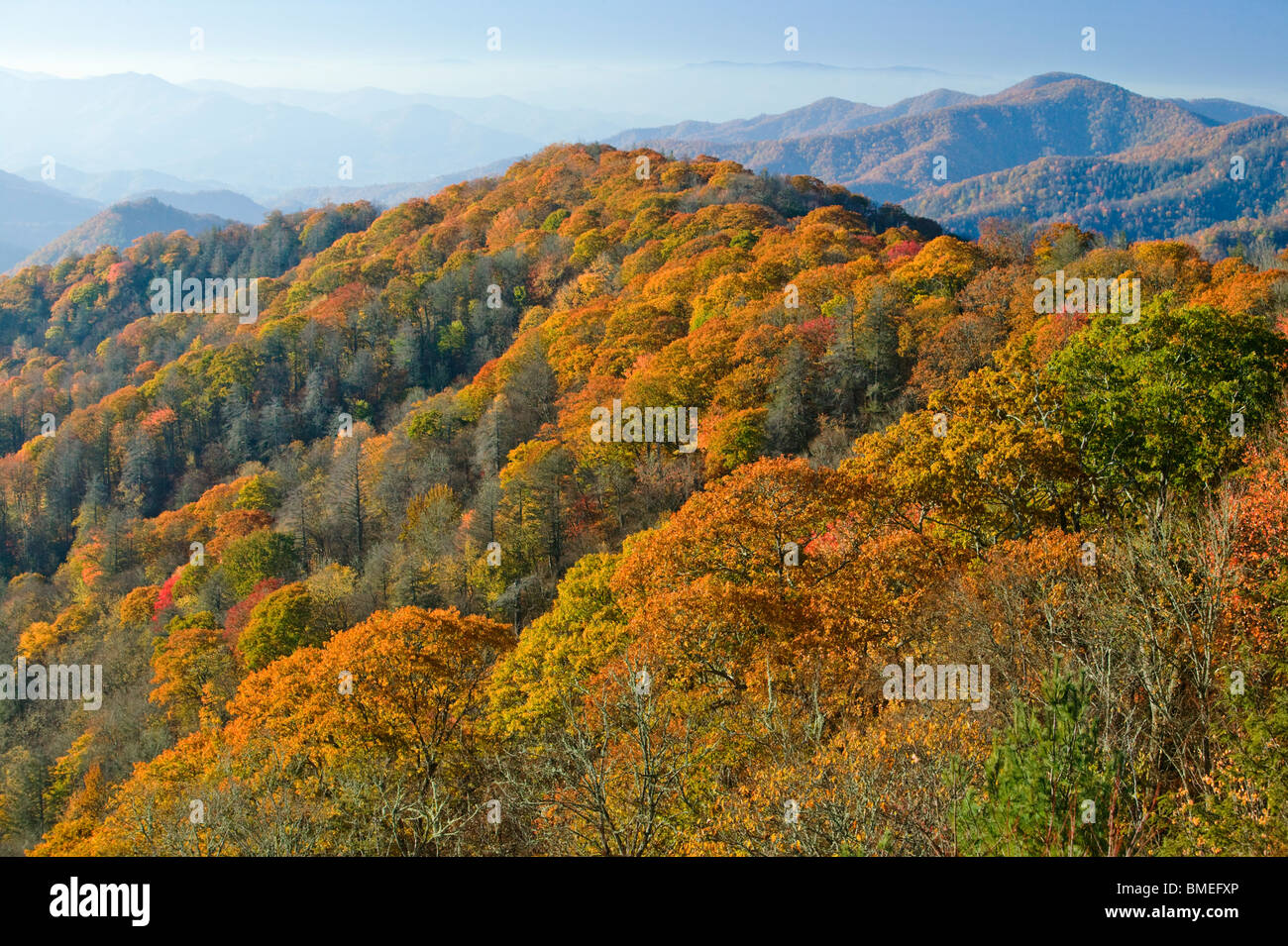 North America, USA, North Carolina, View of fog covered Great Smokey Mountains National Park, elevated view Stock Photo