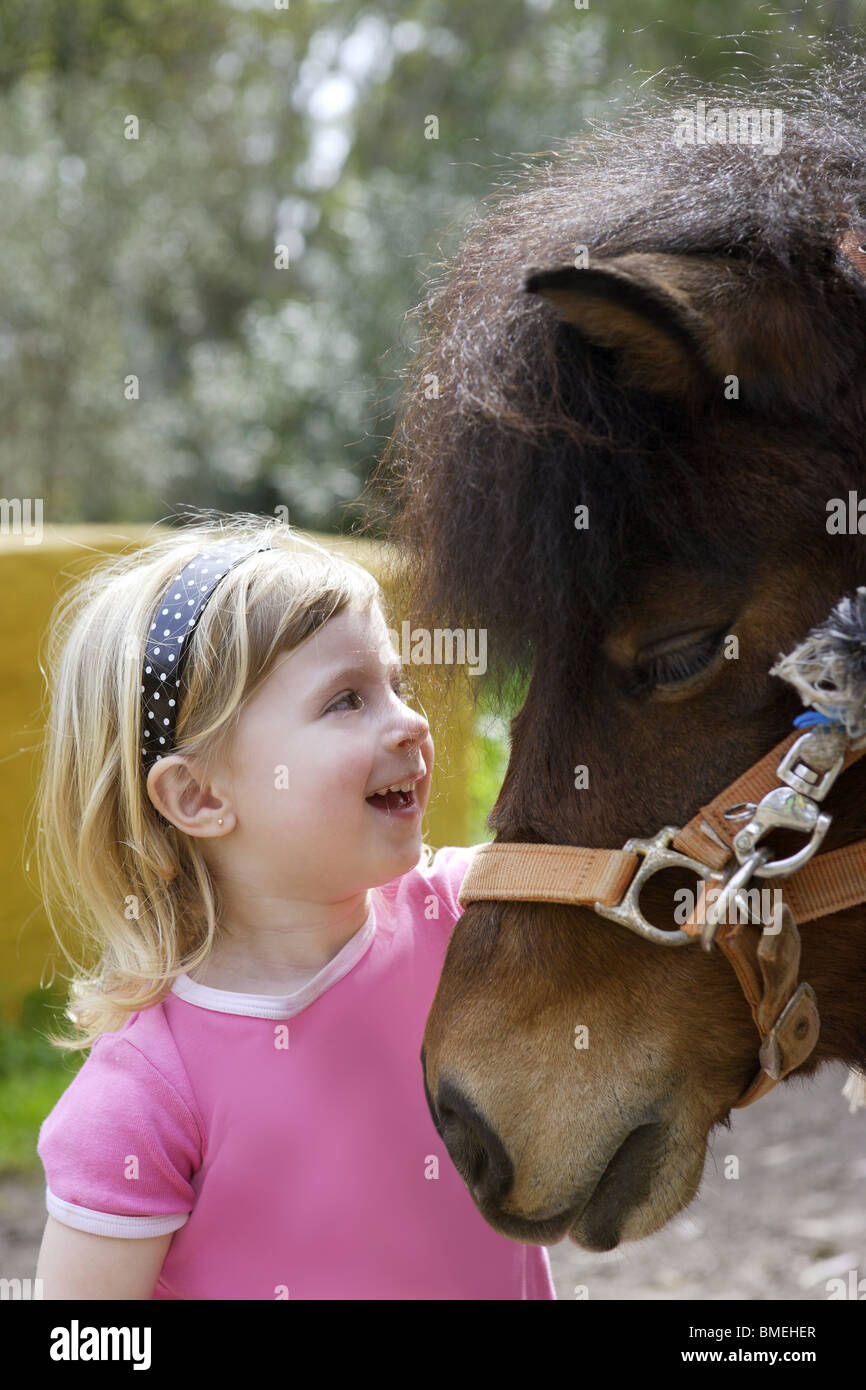 Funny Baby Horse High Resolution Stock Photography And Images Alamy