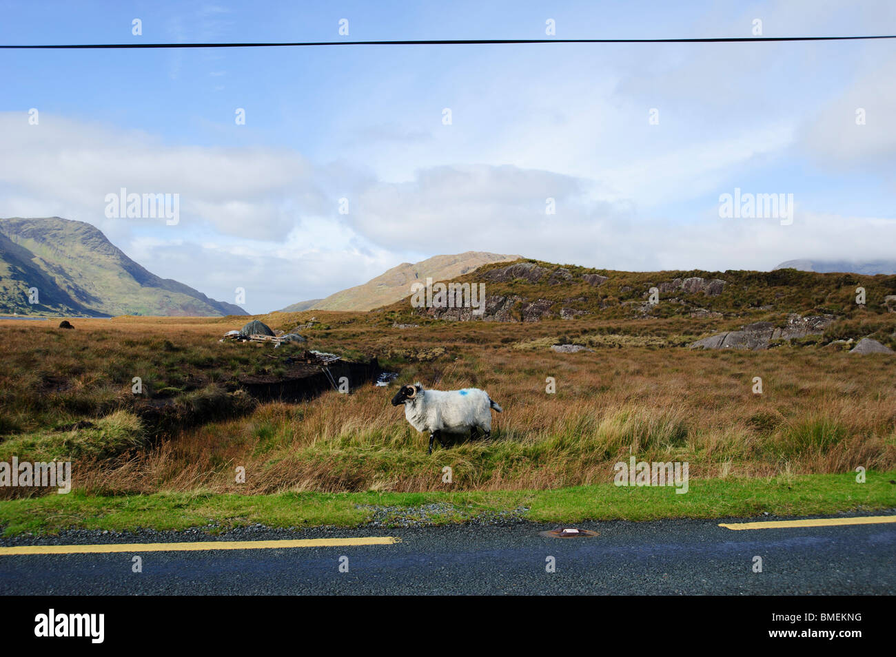 N59, County Galway, Province of Connacht, Ireland - Stock Image