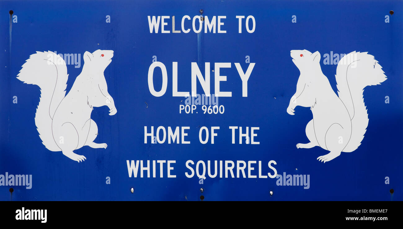 Welcome to Olney Illinois White Squirrel Town Sign - Stock Image
