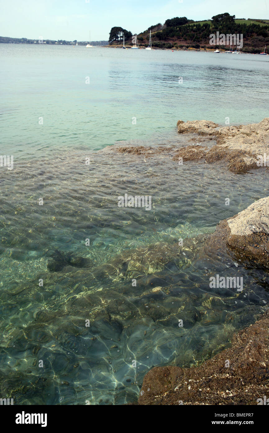 Clear water at mouth of St Just in Roseland creek where it joins the Carrick Roads Cornwall Stock Photo