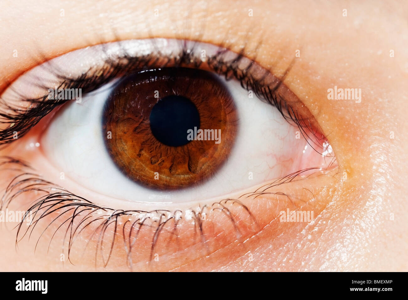 Close Up Of A Brown Eye - Stock Image