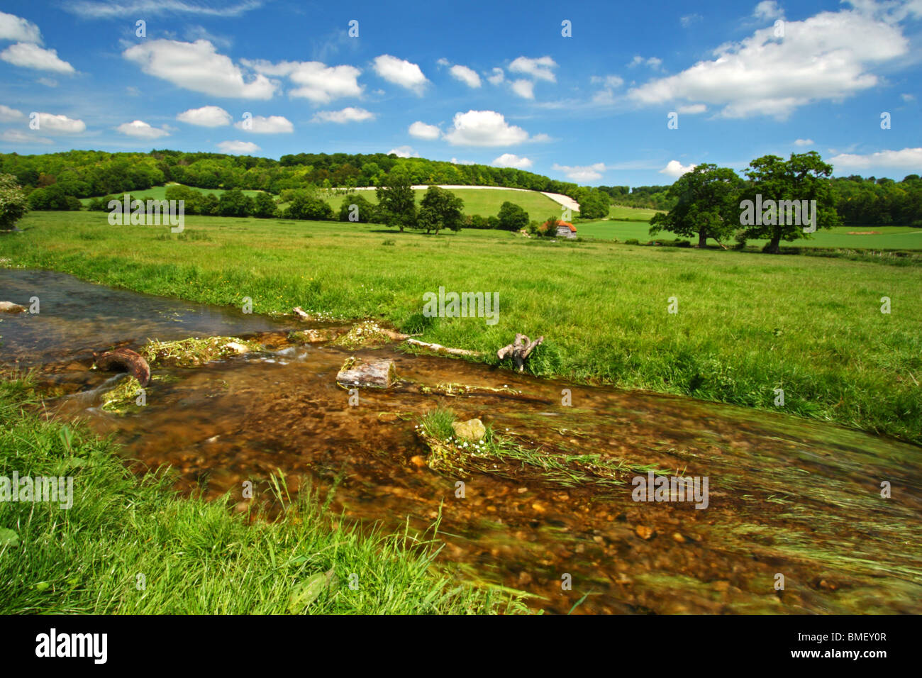 Hambleden Brook, a chalk stream in the Chilterns, flowing through a farmers field in Mill End, Buckinghamshire, - Stock Image