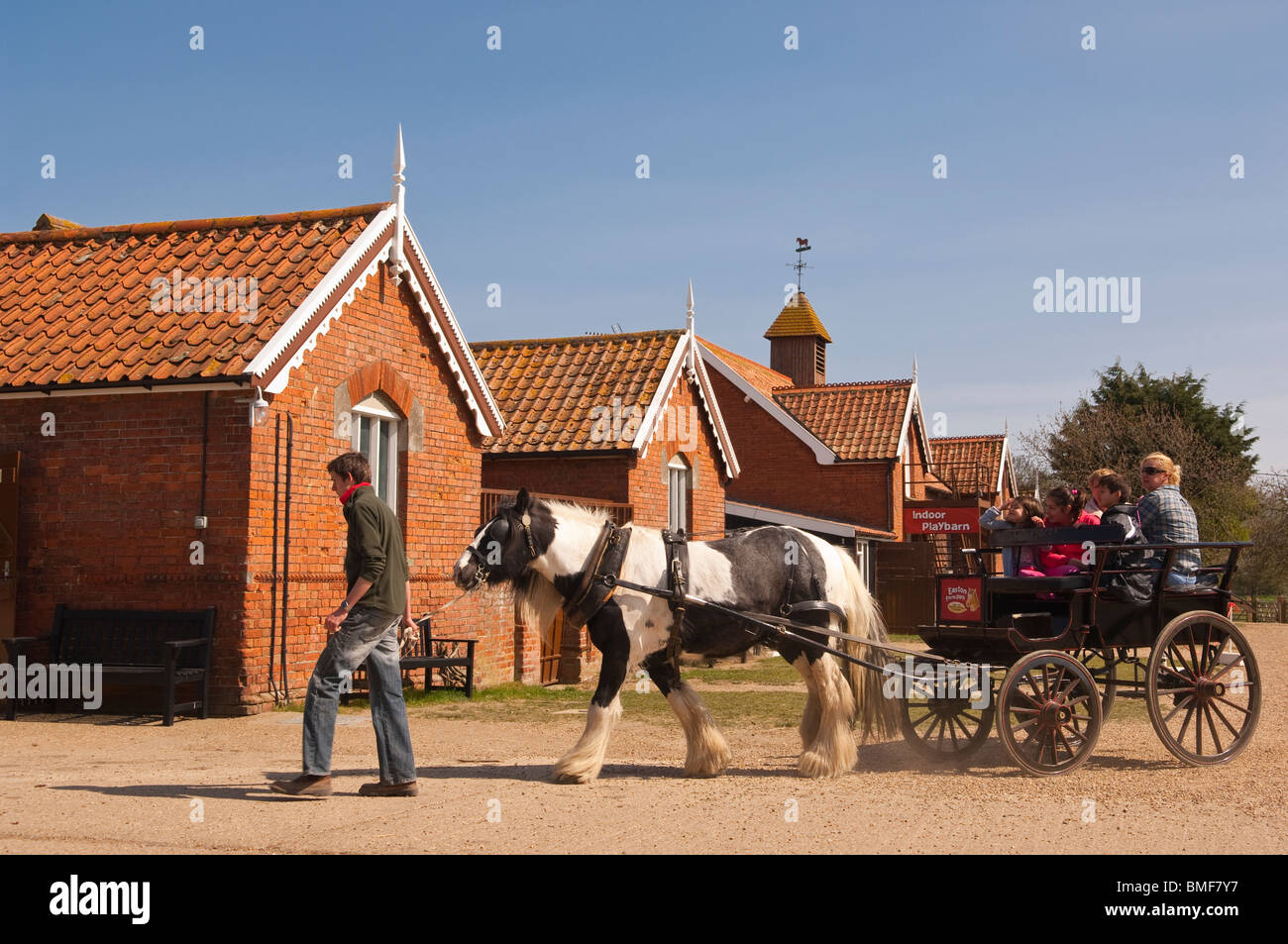 A pony & trap at Easton Farm Park in Easton , Woodbridge , Suffolk , England , Great Britain , Uk - Stock Image