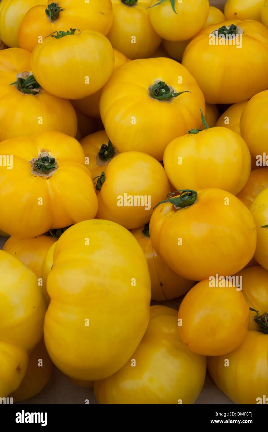 Heirloom tomatoes on sale at the Issaquah, Washington Saturday Market. - Stock Image
