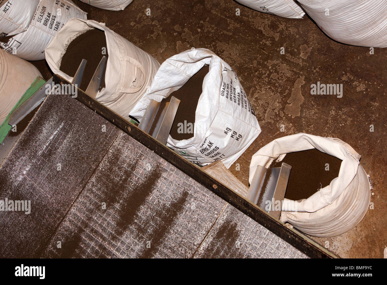 India, Tamil Nadu, Udhagamandalam (Ooty), tea factory, machine grading leaves into different sized leaves - Stock Image
