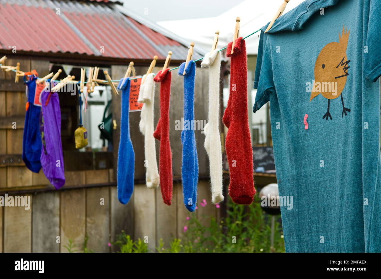 Coloured, colored socks and cartooned teeshirt pegged to a cloths line - Stock Image