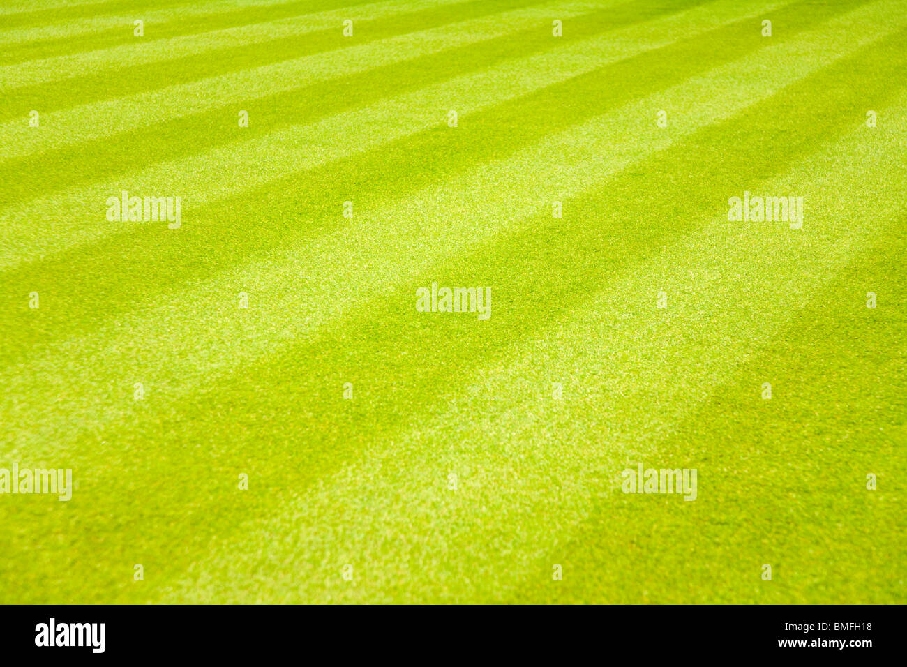 Stripy Lawn With Striped Grass. - Stock Image