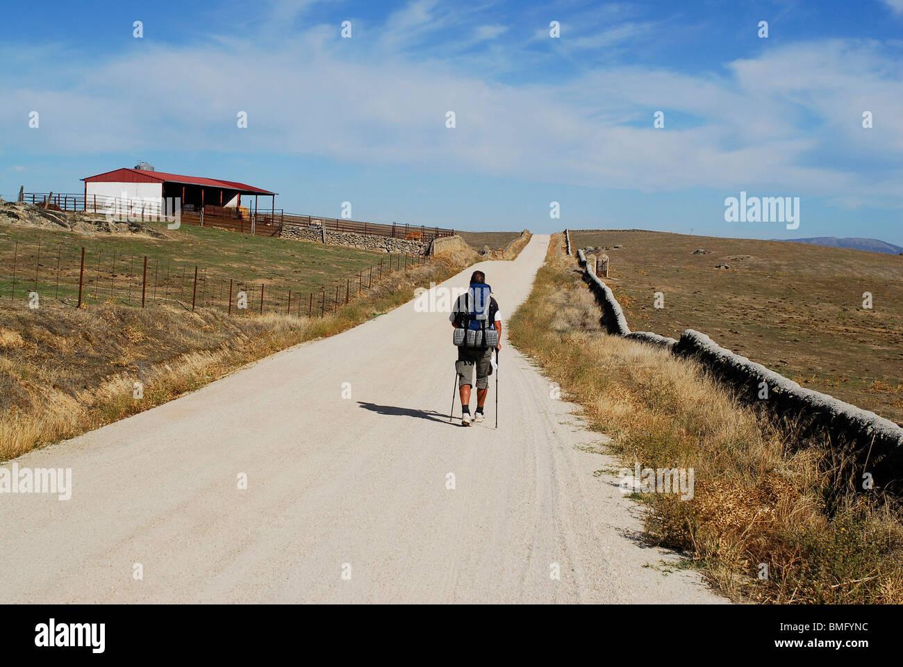 Pilgrim walking the Silver Way or Via de la Plata to Santiago in Caceres province. Extremadura region, Spain - Stock Image