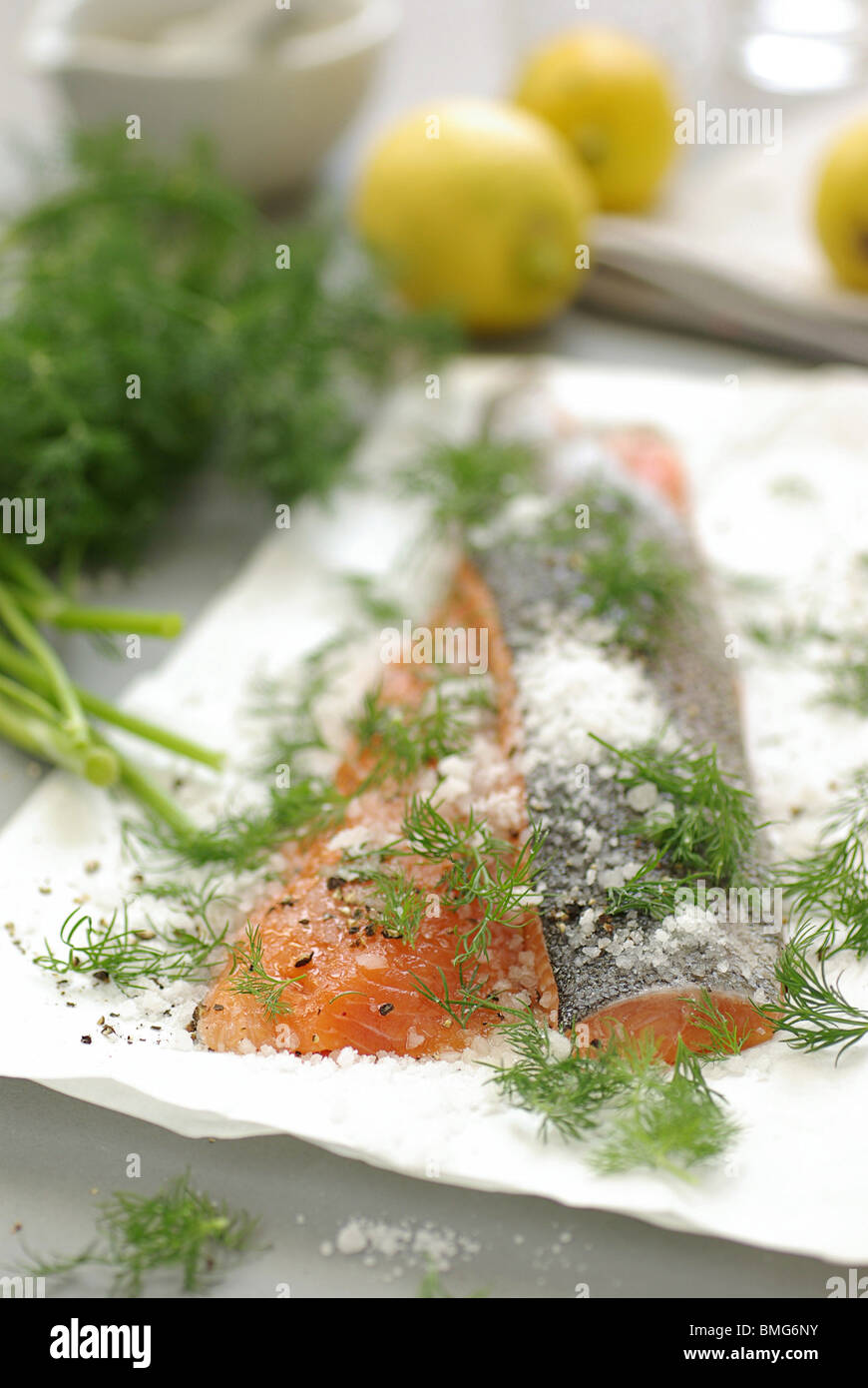 Graved Lachs With Dill And Salt - Stock Image