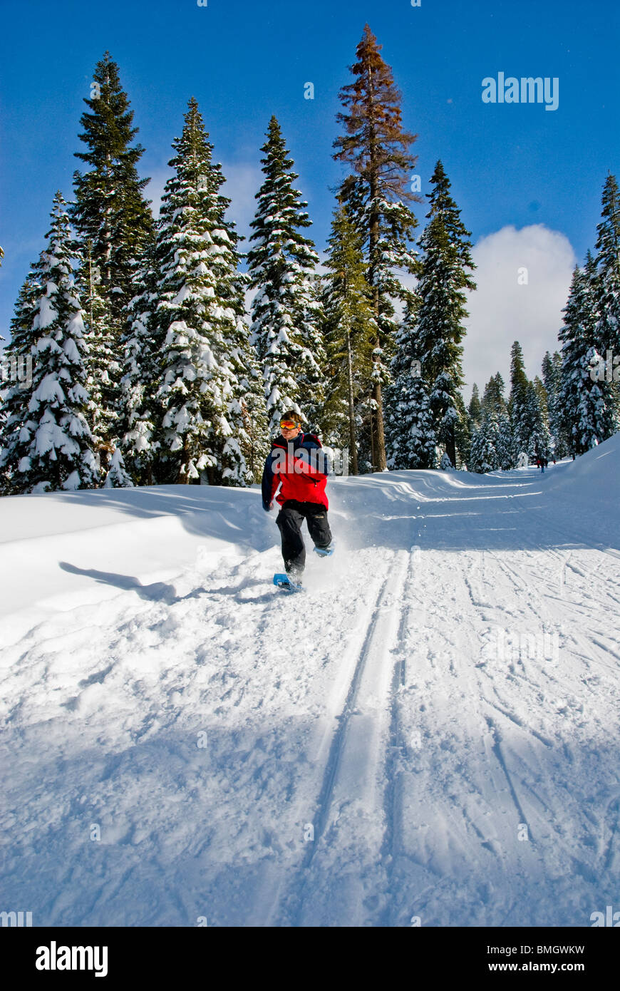 snowshoes, running, racing, sport, Winter scene, North Lake Tahoe, California, USA Stock Photo
