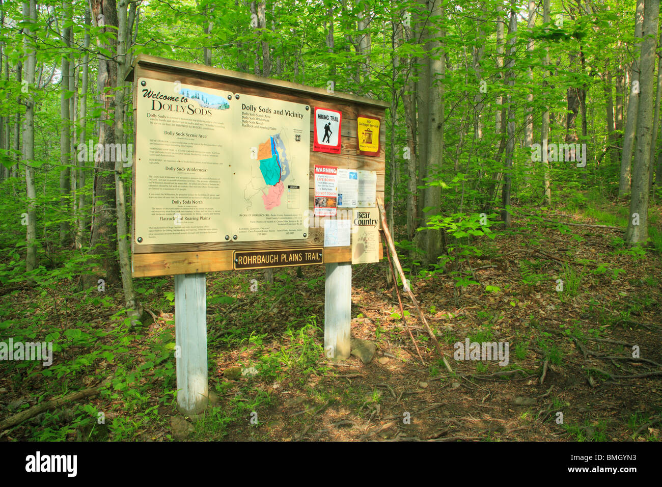 Sign Board at Rohrbaugh Trail Trailhead, Dolly Sods Wilderness Area, Hopeville, West Virginia - Stock Image
