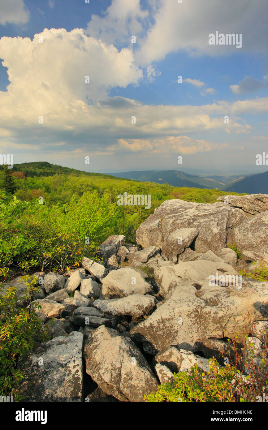 Dolly Sods Wilderness Scenic Area, Hopeville, West Virginia - Stock Image