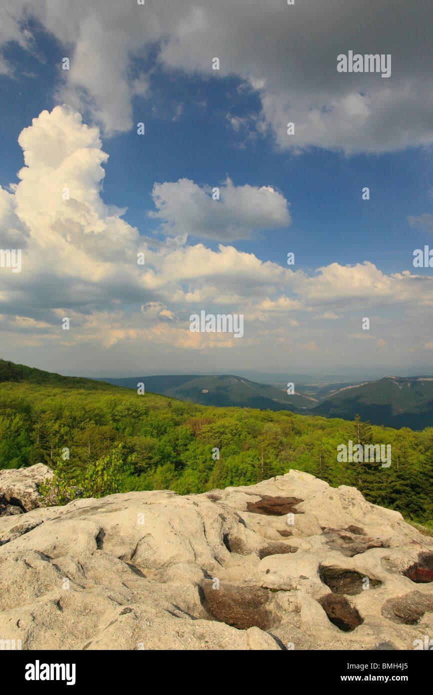 Dolly Sods Wilderness Scenic Area, Hopeville, West Virginia - Stock Image