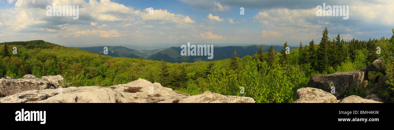 Dolly Sods Wilderness Scenic Area, Hopeville, West Virginia Stock Photo