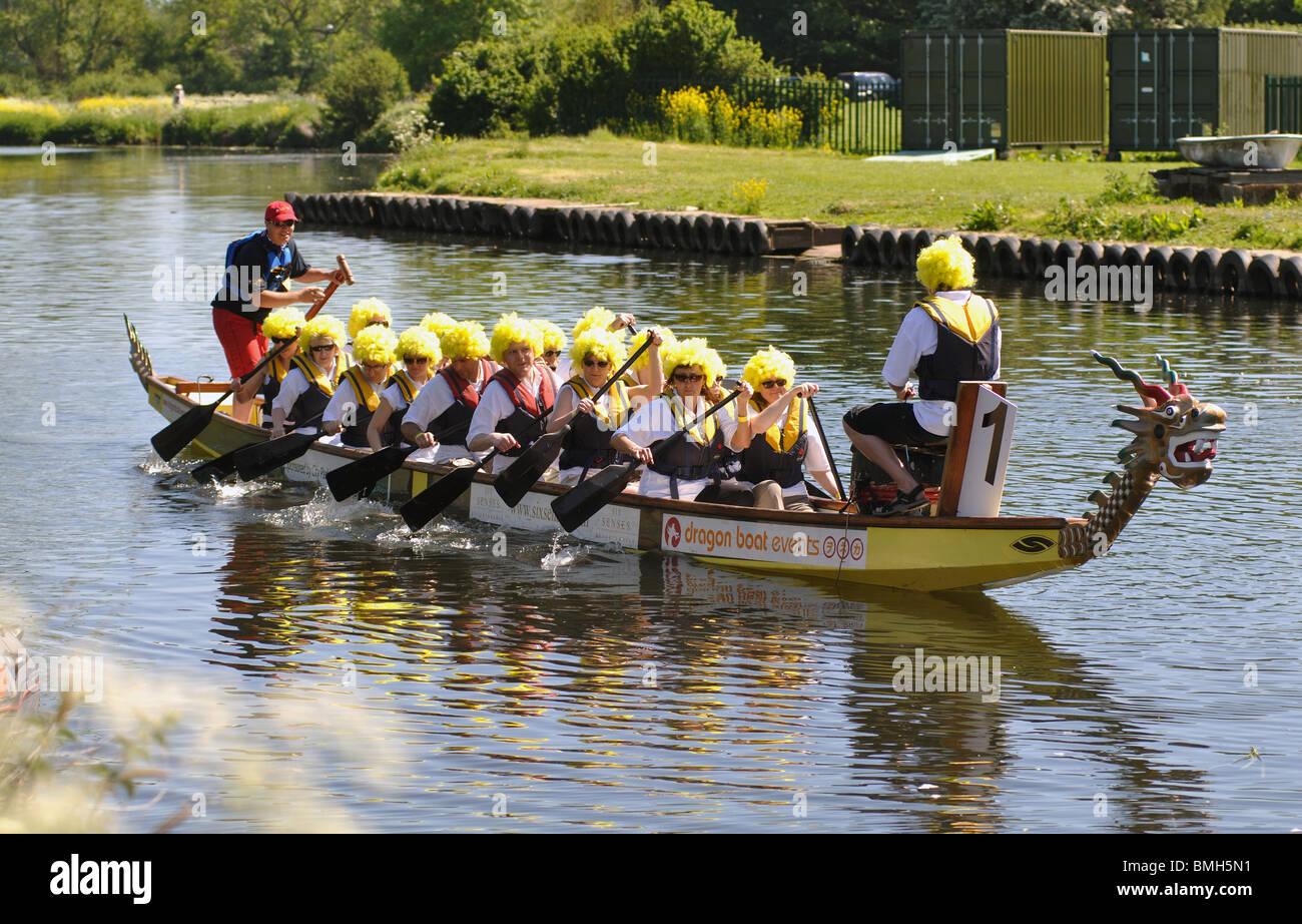 British dragon boating team msd organon laboratories