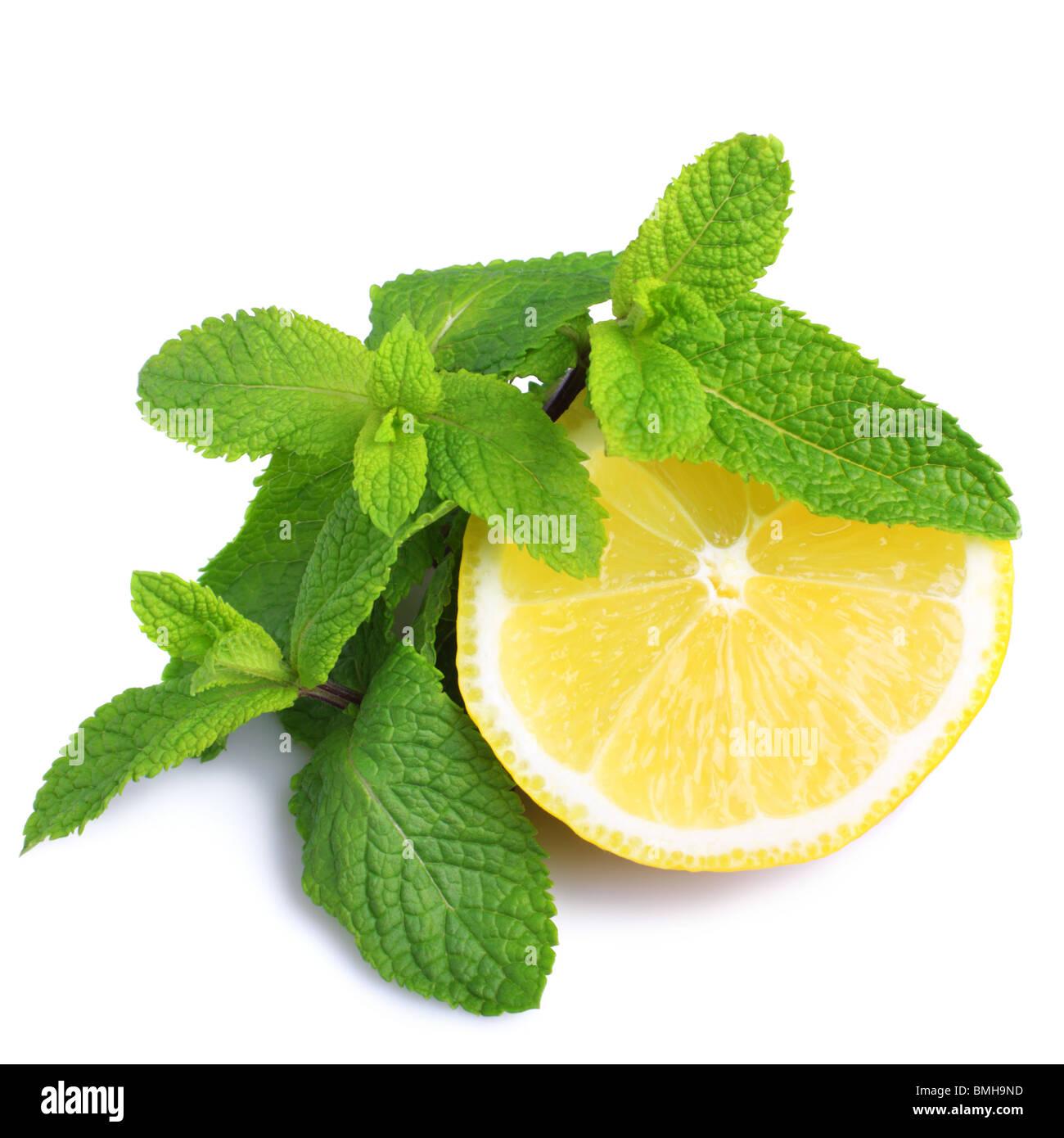 Mint and lemon isolated on white background - Stock Image