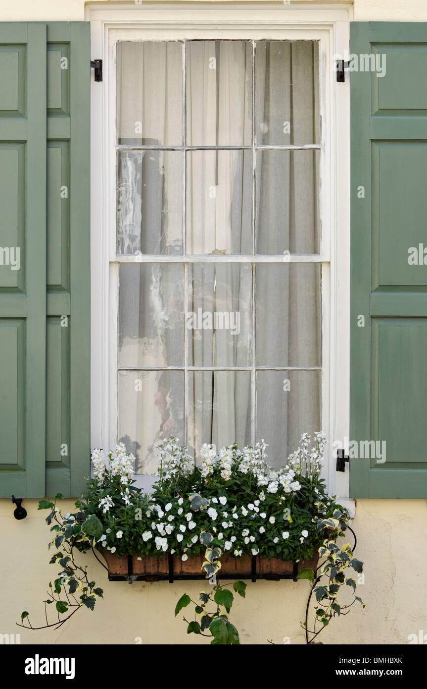 Details of Window, Shutters and Window Box with Flowers on Historic Home in Charleston, South Carolina - Stock Image